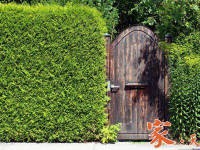 花园门 (Garden Gate)4