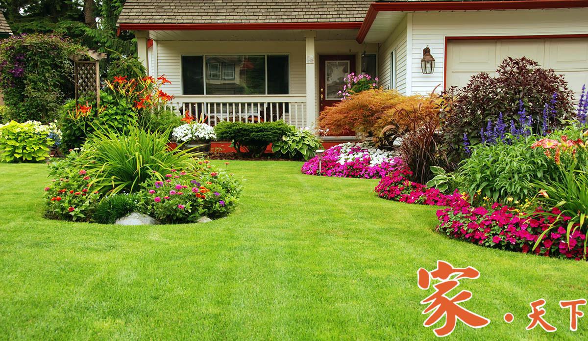 花圃设计,花园改造,花园设计,家庭绿化,庭院绿化,庭院种植,庭院规划, 庭院设计,人造景观,景观设计