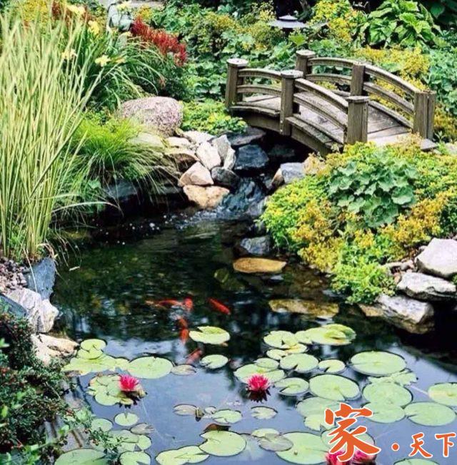 美国庭院设计,别墅装修,豪宅装修,庭院装修,假山喷泉,后院鱼池,庭院池塘,假山鱼池,别墅庭院,美国花园设计