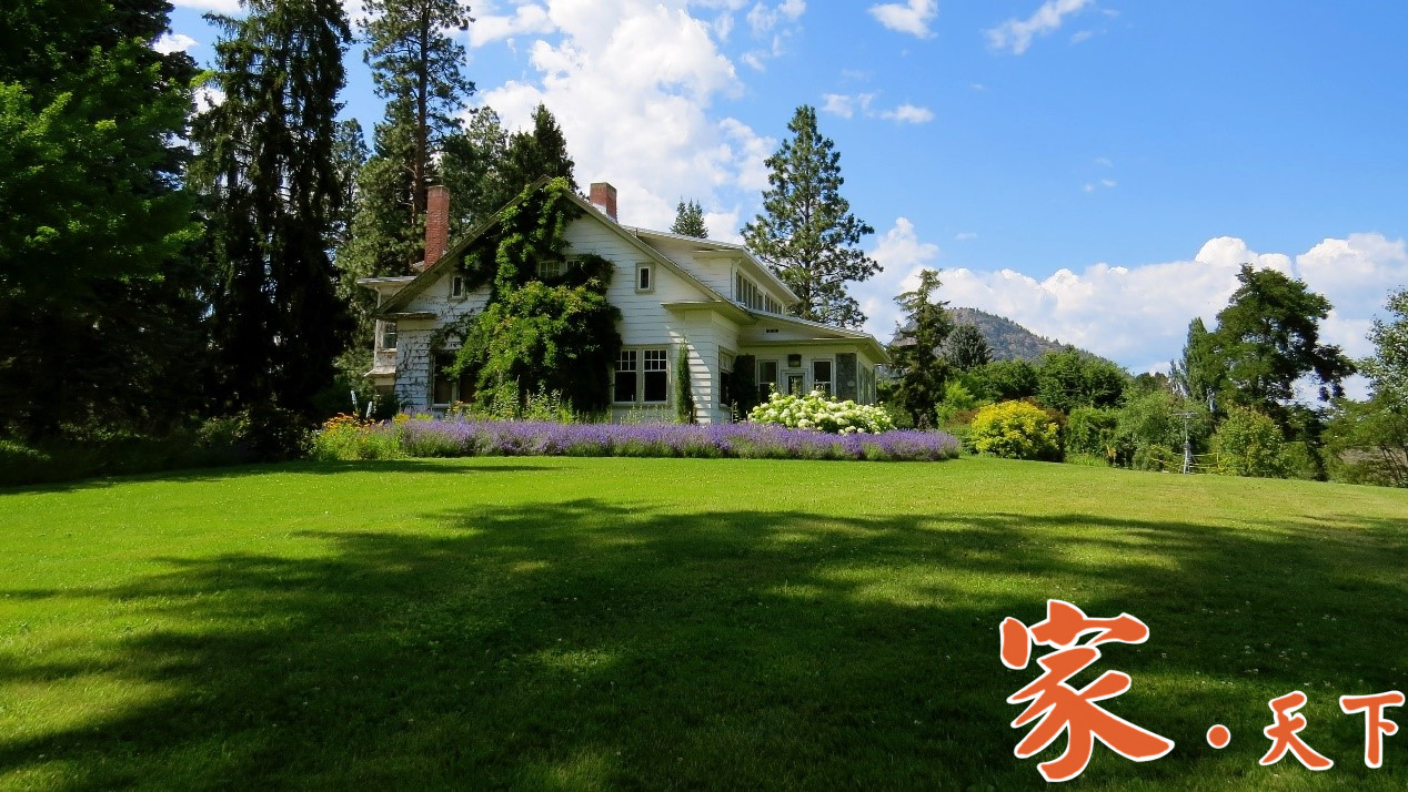 美式庭院景观植物配置,新古典风格篇。庭院绿化 观赏植物 庭院设计 家庭绿化 美国前院设计