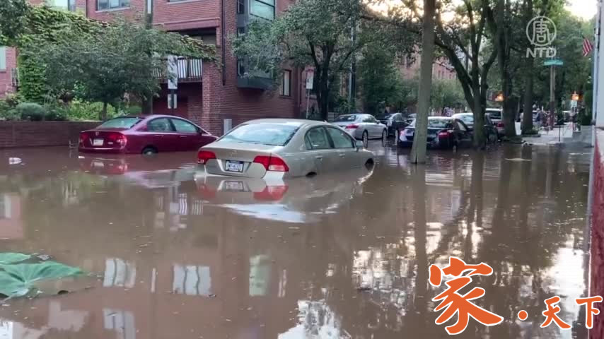 地下室洪水,7 个步骤帮你排忧解难 | 房东房客 | 飓风暴雨洪水 | 地下室水患(新唐人)